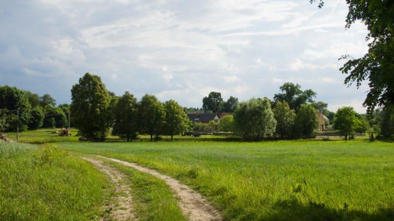 Ranch-Piwonia-Gniewoszyce-021