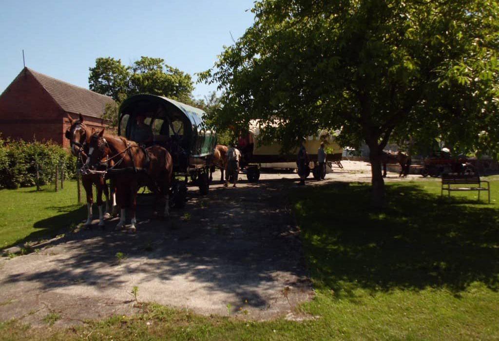 Ranch-Piwonia-Wanderreiter-003